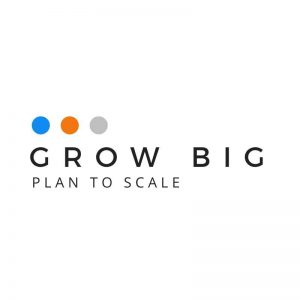 website design for massage therapists - grow big plan